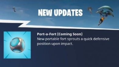Photo of New update will Portable fort-sprouting grenades in Fortnite